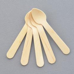 Blank Mini Wooden Dessert Spoons (set of 48)